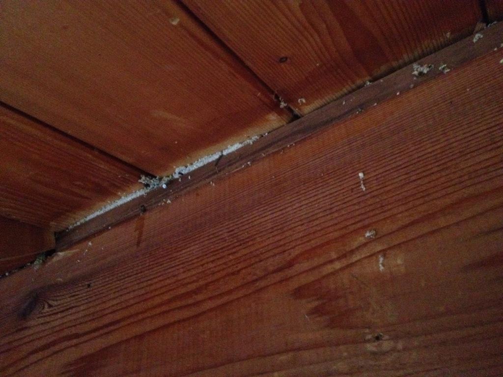 Loft Renovation No More Wood Paneling Diary Of An